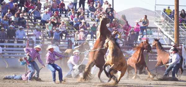 PRCA rodeo thrills and spills at Dillon